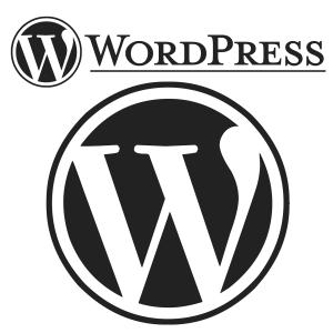 wordpressが重い時の原因やプラグインなどの対処法を解説。