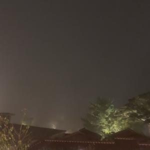 霧島という地名だけあってか、霧が美しい。欠航や引き返しもあると予想してたけど、台風の...