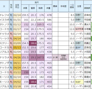 2021年度キャロット募集 中間申込状況②(09/06)