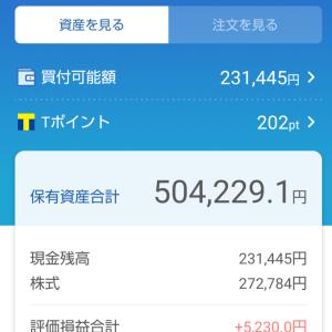 わたしの日本株ポートフォリオ(2021.6.4)