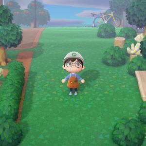 自然豊かな場所をつくることにしました。