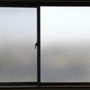 夏に夜窓を開けるのは湿気とカビで逆効果?虫にもご注意を