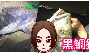 【黒鯛】ナイトゲームでルアーチヌ☆③