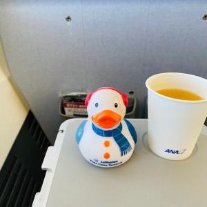 札幌 3日目③ 新千歳空港から中部国際空港セントレアへ、そして…