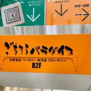 大阪 3日目① 大阪のうどんは思った以上に大きかった⁈