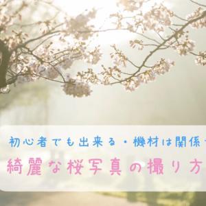 綺麗な桜写真の撮り方|初心者でもできる5つのポイントをまとめました