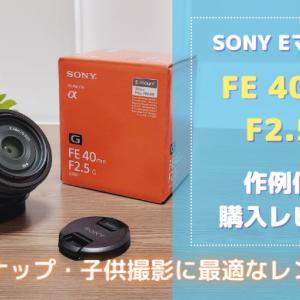 レビュー|SEL40F25Gはスナップ・子供撮影に最適なレンズでした!|FE40mm F2.5G