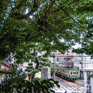 江ノ電305号 彼岸時の龍口寺