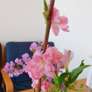 ・イライラ肌荒れはお花を見よう