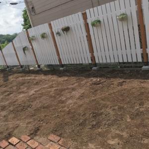 【多肉植物】草むしりを頑張った日のタニパト