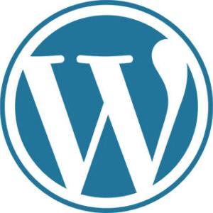 【WordPress】自動整形機能によるPタグが勝手に入らないようにする