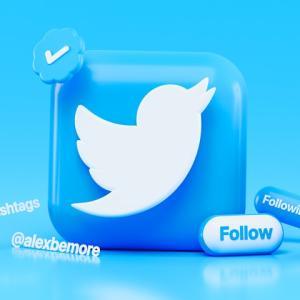 【ブログ立ち上げ~2か月目向け】Twitter運用で感じたことと、Twitterとの向き合い方について解説!