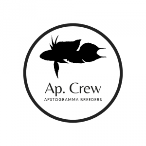 Ap. Crew