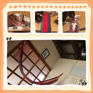 ダイソー500円商品のハンモック