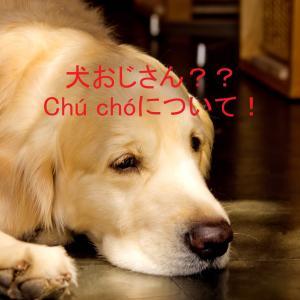 """犬おじさん、猫おじさん??「Chú」の特殊な使い方について!Về cách dùng từ """"chú"""" trước con vật"""