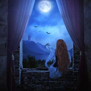 あなた…お月様がきれいよ
