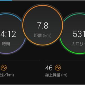不整地ペース走 7.8km