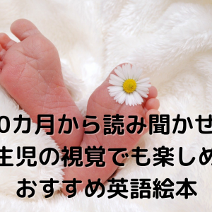 新生児の目を惹く絵本【赤ちゃんの英語モノクロ絵本おすすめ7冊】