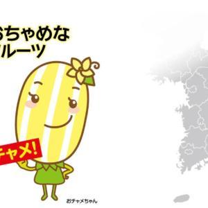 チャメが日本に!韓国の代表的なフルーツ見つけた~