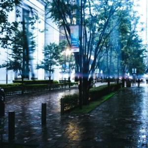 雨の日の悪趣味