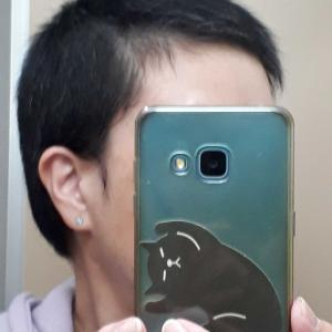 3月の頭髪記録