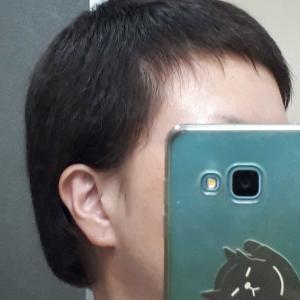 4月の頭髪記録②