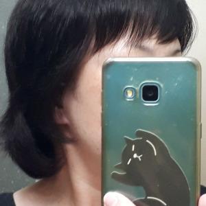9月の頭髪記録