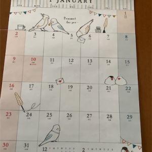 ちょっと早いけど来年のカレンダー