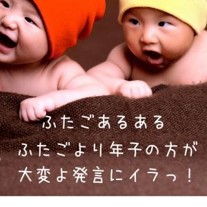 ふたごあるある ふたごより年子の方が大変よ発言にイラッ!!