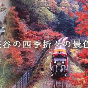 【京都】嵯峨野トロッコ列車の乗車券予約購入方法を紹介!