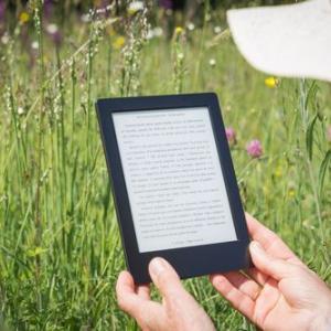 【おすすめの副業?】出版した電子書籍(Kindle)2冊の売上報告 1ヶ月目
