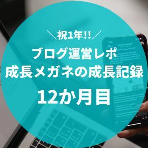 【PVと収益を公開します】ブログ運営12か月目のレポート