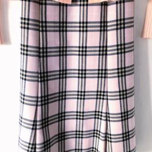 クローゼットを探して見つけたスカート