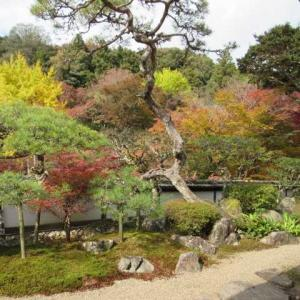 福寿院の借景庭園