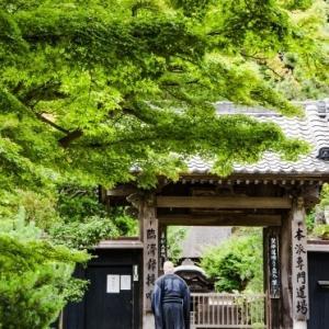 円覚寺 緑覆