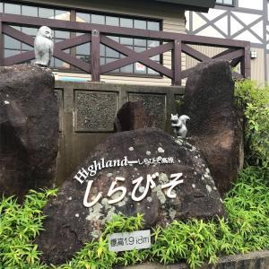 【おすすめキャンプ場レビュー】しらびそ高原山岳オートキャンプ場(長野)