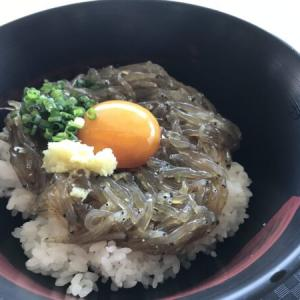 """静岡県富士市の美味しいたび飯!""""静岡のしらす""""の「赤富士丼」"""