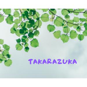 宝塚歌劇雪組 全国ツアー ミュージカル・ロマン 『ヴェネチアの紋章』【愛媛・チケット先行先着販売】