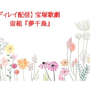 【本日配信】 宝塚歌劇 宙組 『夢千鳥』宝塚バウホール 5月8日 18:30 配信開始