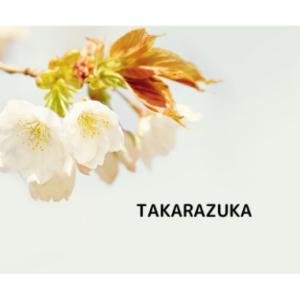 宝塚歌劇 宙組 ブロードウェイ・ミュージカル 『プロミセス、プロミセス』【先行抽選販売】11/17(水)公演「チケット抽選受付中」