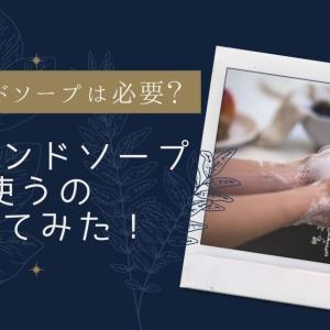 一般家庭の手洗いに薬用ハンドソープは必要?薬用ハンドソープを使うのやめてみた!