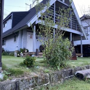 家メンテ ブロック塀の苔落とし