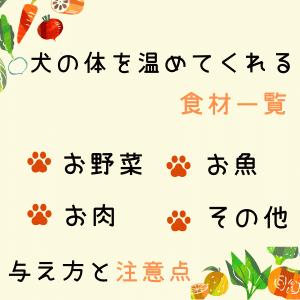 【犬の温活】犬の体を温めてくれる食材一覧