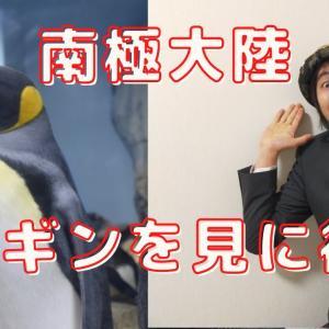 【南極大陸】上陸!!70万~100万円くらい。。。ペンギンに会える!