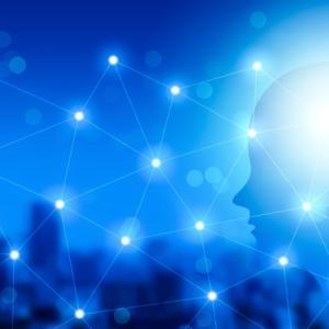マインドフルネスと内側前頭葉の関係