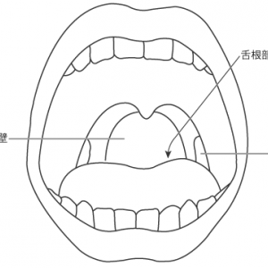 咽頭反射:検査方法と結果の解釈