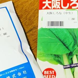 大阪までタネを買いに行きました💨💨💨