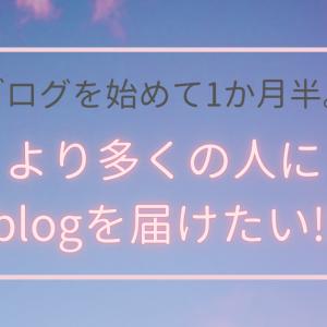 blogを始めて1か月半。より多くの人へ届けたい‼︎