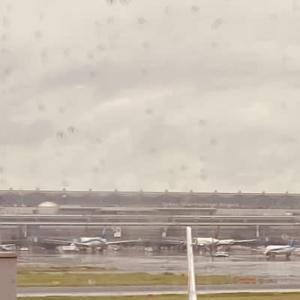 羽田空港で昼食してます‼️