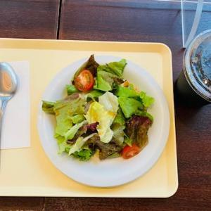 今日の昼食…昭和音大「イルカンピエッロ」👍